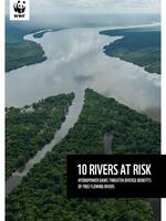 10 Rivers at Risk Brochure