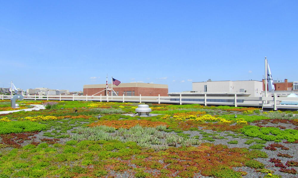 WWF HQ green roof Rooftop Garden American Flag Wide Shot