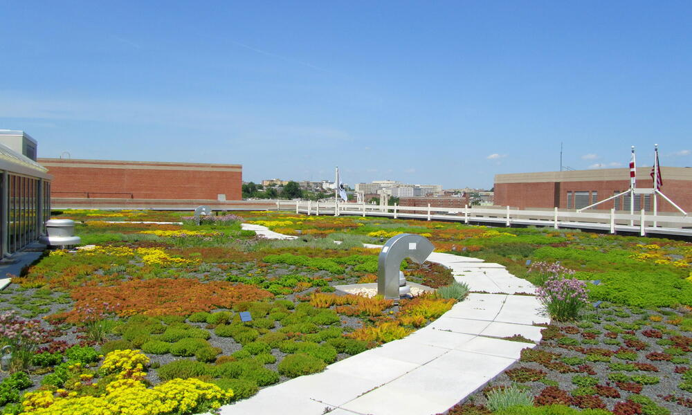 WWF HQ green roof Rooftop Garden Vent