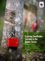 Exploring Smallholder Solutions in the Rubber Sector Brochure