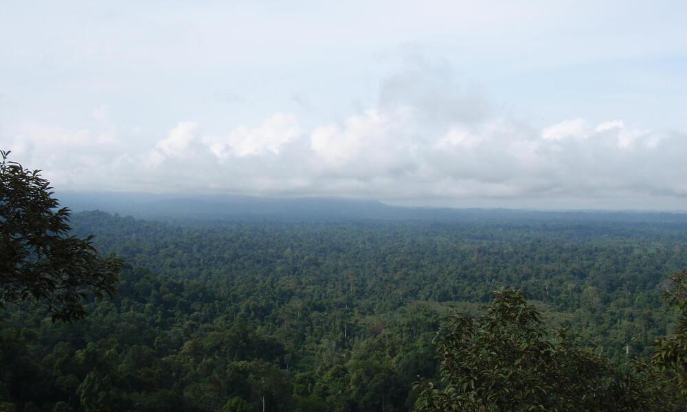 Thirty Hills, Sumatra