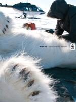 WWF 2015 Annual Report  Brochure