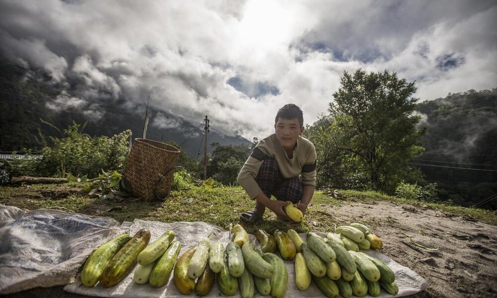 A farmer selling fresh produce