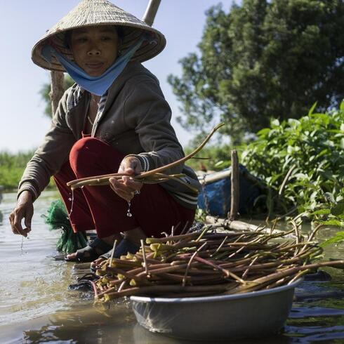 A fisherman's wife cleans vegetables