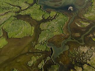 Aerial shot of Bristol Bay