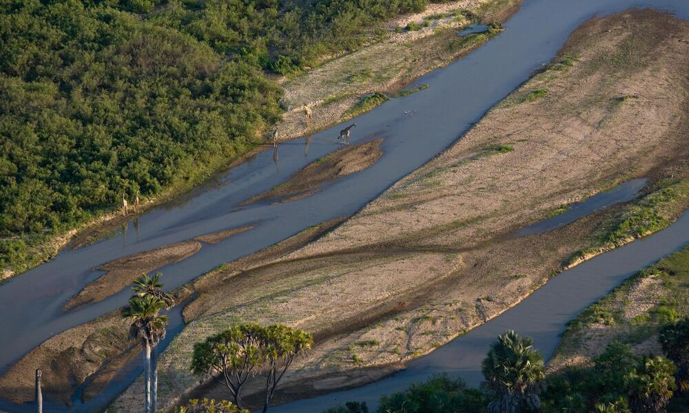 aerial of a river in Selous