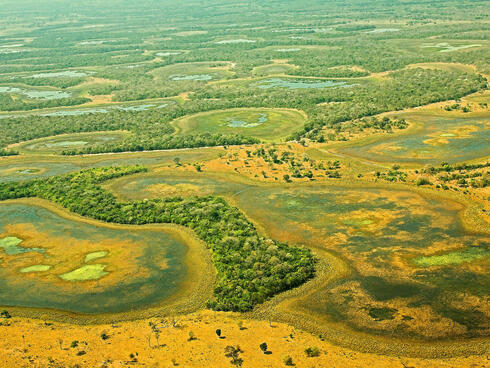 Aerial view of Pantanal in Brazil.