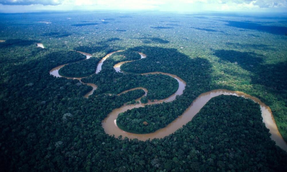 Meandering Amazon River