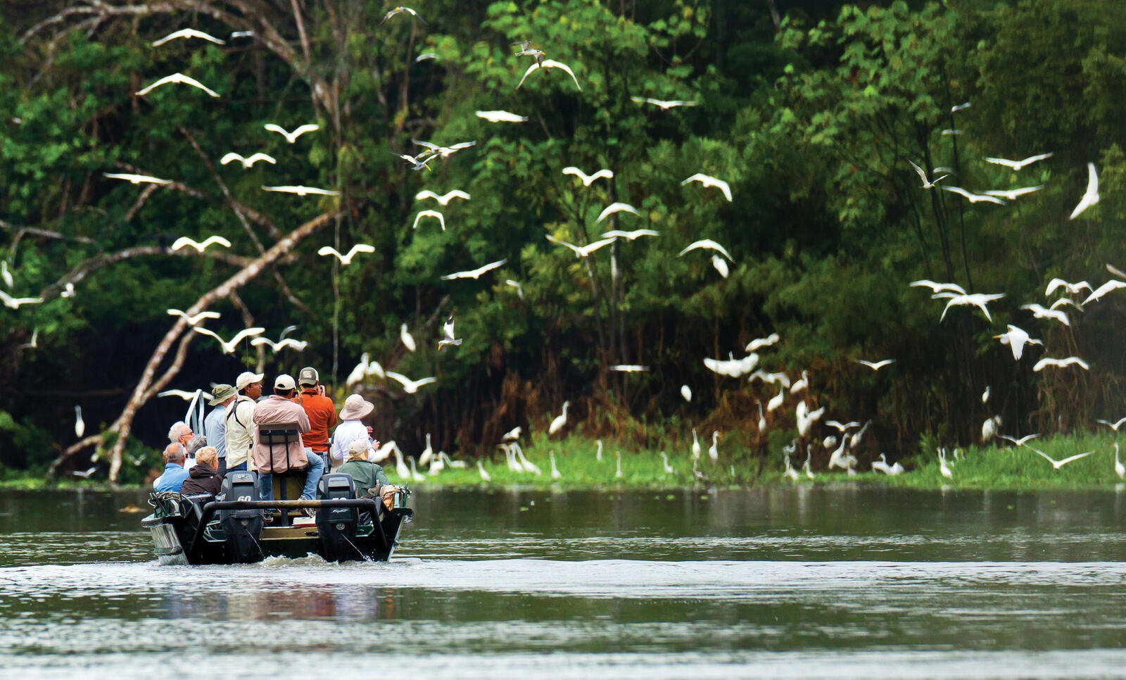 boat in amazon