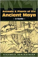 Animals and Plants of the Ancient Maya book