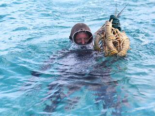 Diver holding lobsters in ocean.