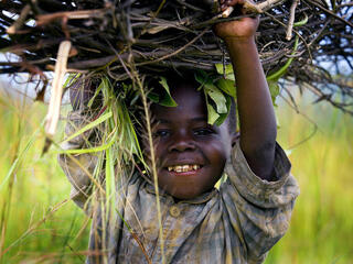 A young boy carrying firewood that he has collected to sell in the market near the provincial capital of Goma, in the Democratic Republic of Congo.