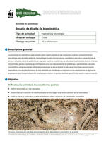 Desafío de diseño de biomimética Brochure