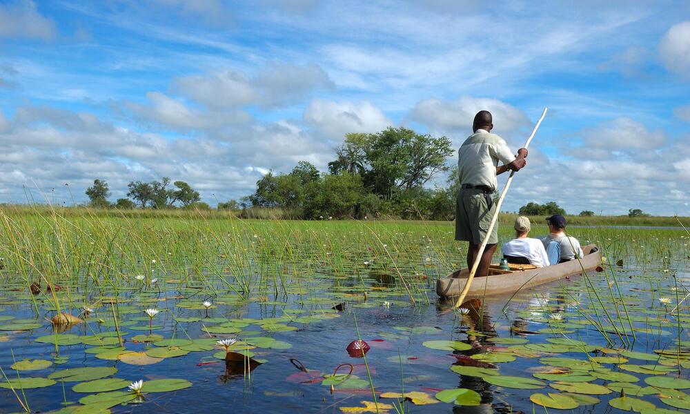 Boat ride on the Okavango Delta