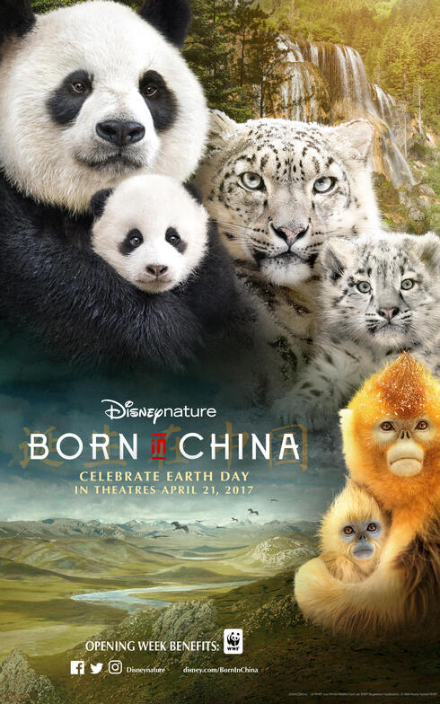 Disneynature's Born in China movie poster