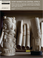 Elephant Ivory Markets in Central Africa Brochure