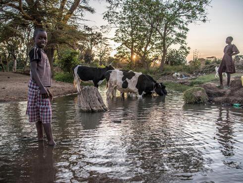 Children water their livestock in lower Loita, Kenya