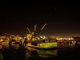 Chile fishing boats set sail at dawn