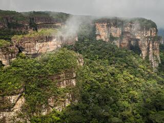 Colombia's Serranía de Chiribiquete