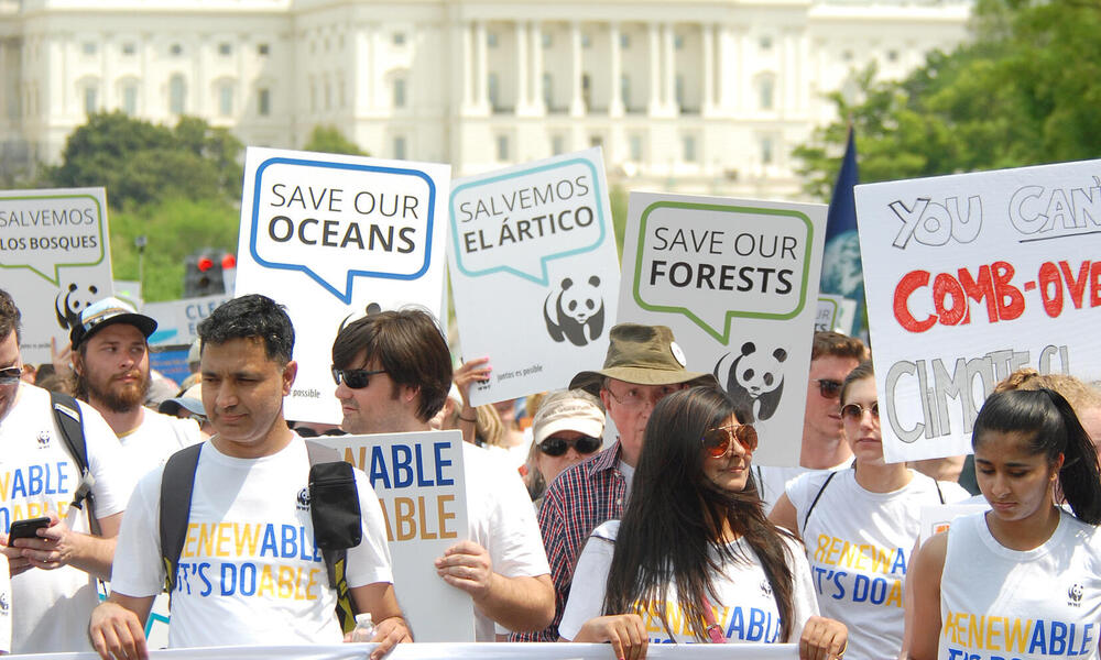 Climate March DC