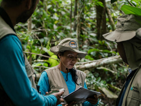 A group of local community leaders stand in dense forest taking notes