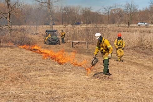 Firemen using a torch to set a controlled fire in dry grass