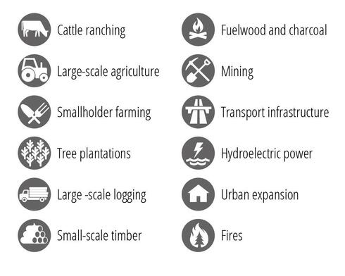 Icon style images showing various regional deforestation types