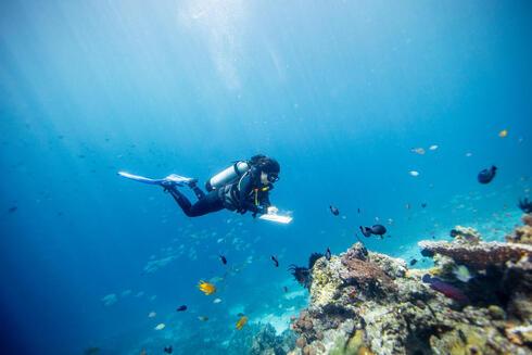 Senior marine scientist at WWF diving in Indonesia