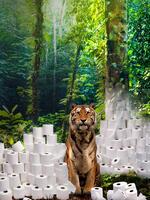 Don't Flush Tiger Forests Brochure