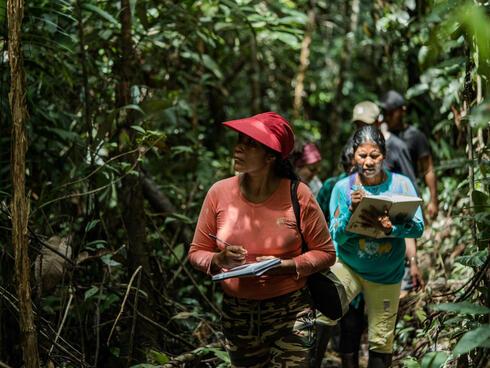 An Ecosystem Services Assessment team walks through the forest