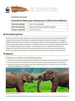 Controla los fideos que consumes por el bien de los elefantes Brochure