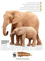 Herramientas Completas sobre los Elefantes Brochure