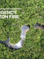 Emergency Amazon Fire Fund Report - May 2021 Brochure