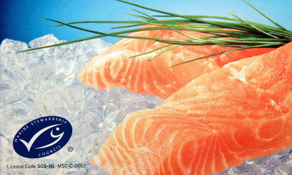 FSC-certified salmon