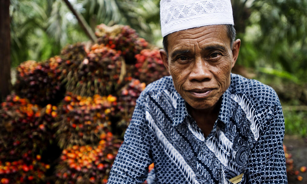 Farmer in Indonesia