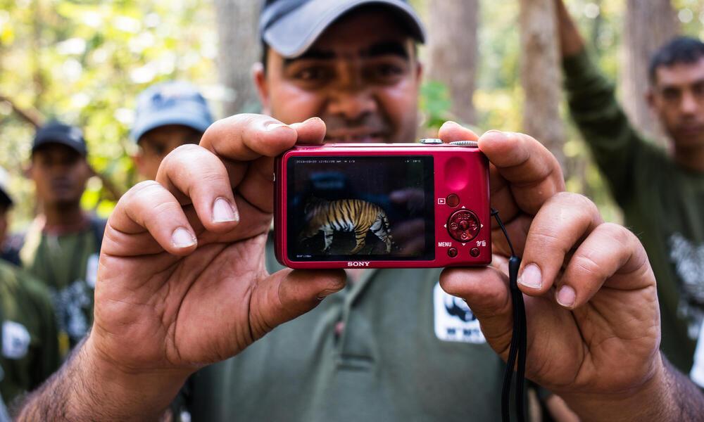 Field Project Officer, WWF Nepal