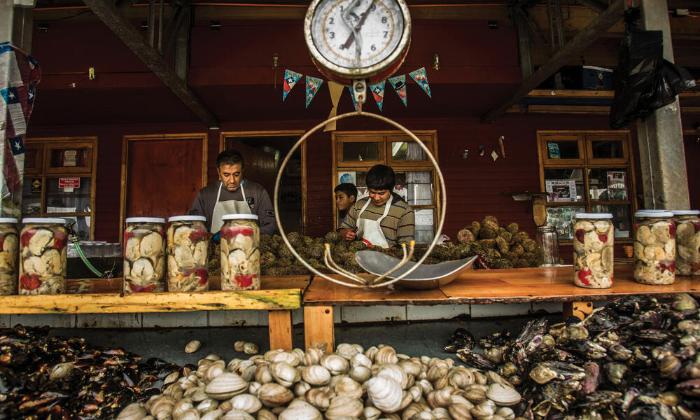 Fish market in Puerto Montt, Chile