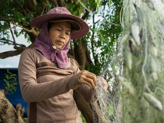 A  local fisherwoman collects small fish from a net on an island inside the Ramsar protected area, Stung Treng, Cambodia.