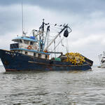 Fishing boat on the water in Ecuador