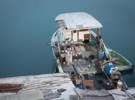 Docked fishing boat