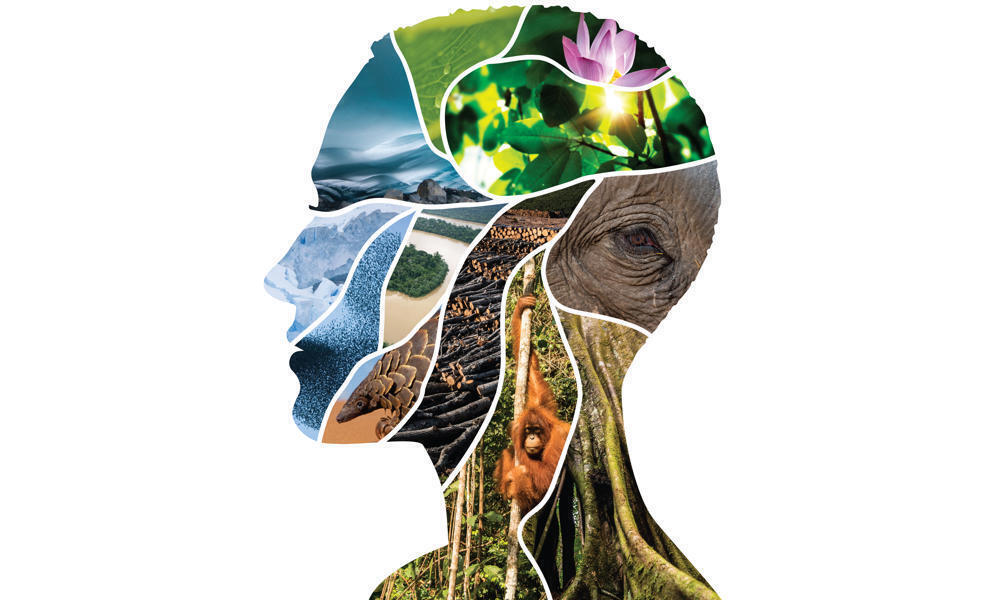 The profile of a person's face is created with a collage of images of animals and nature