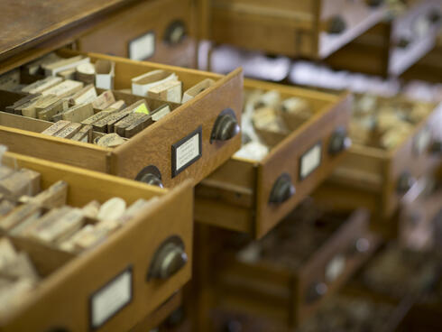 Wood Testing Drawers with Samples