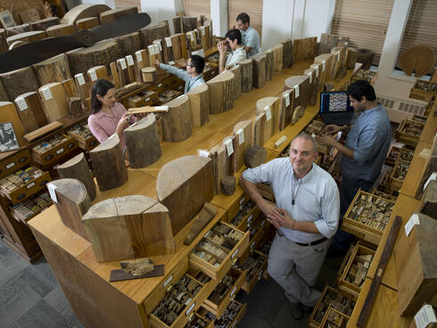 Wood Testing Forensics Team