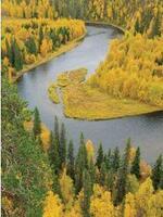 Free Flowing Rivers Fact Sheet Brochure