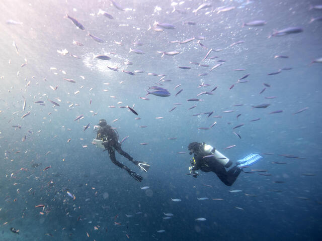 Gabby and Lius Surveying Fish