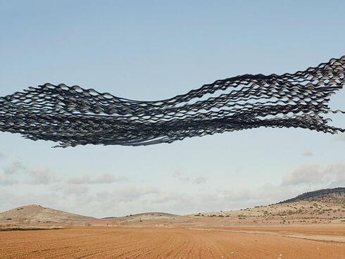 Birds flying in pattern