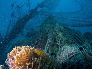Ghost fishing net discarded by fishermen