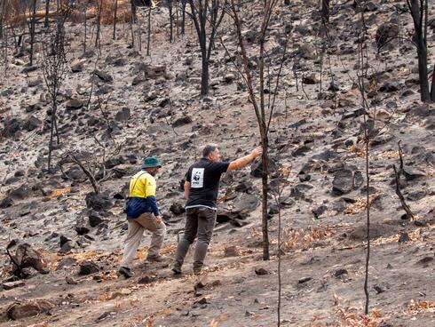 WWF employee surveys fire damage to cockatoo habitat