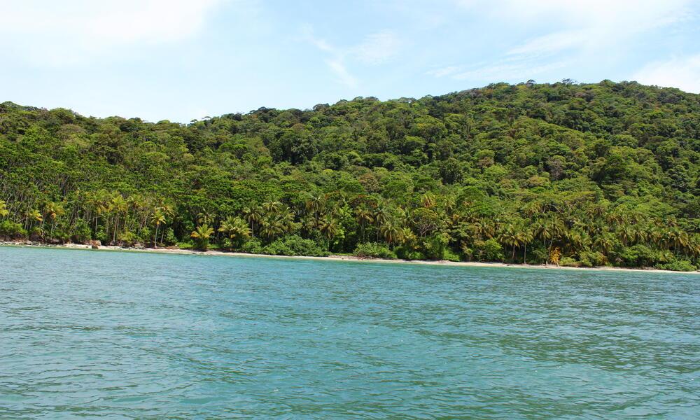 gorgona island colombia