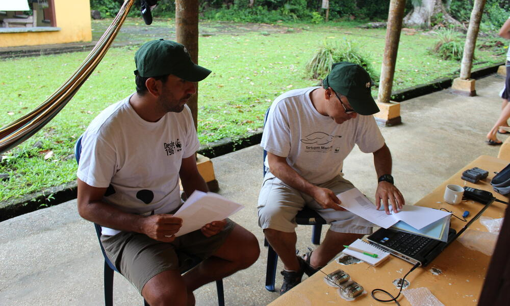 researchers on gorgona